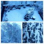 schnee-wuppertal-2-januar-2017-collage