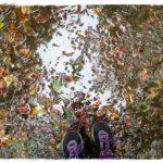laufen-im-regen-herbst