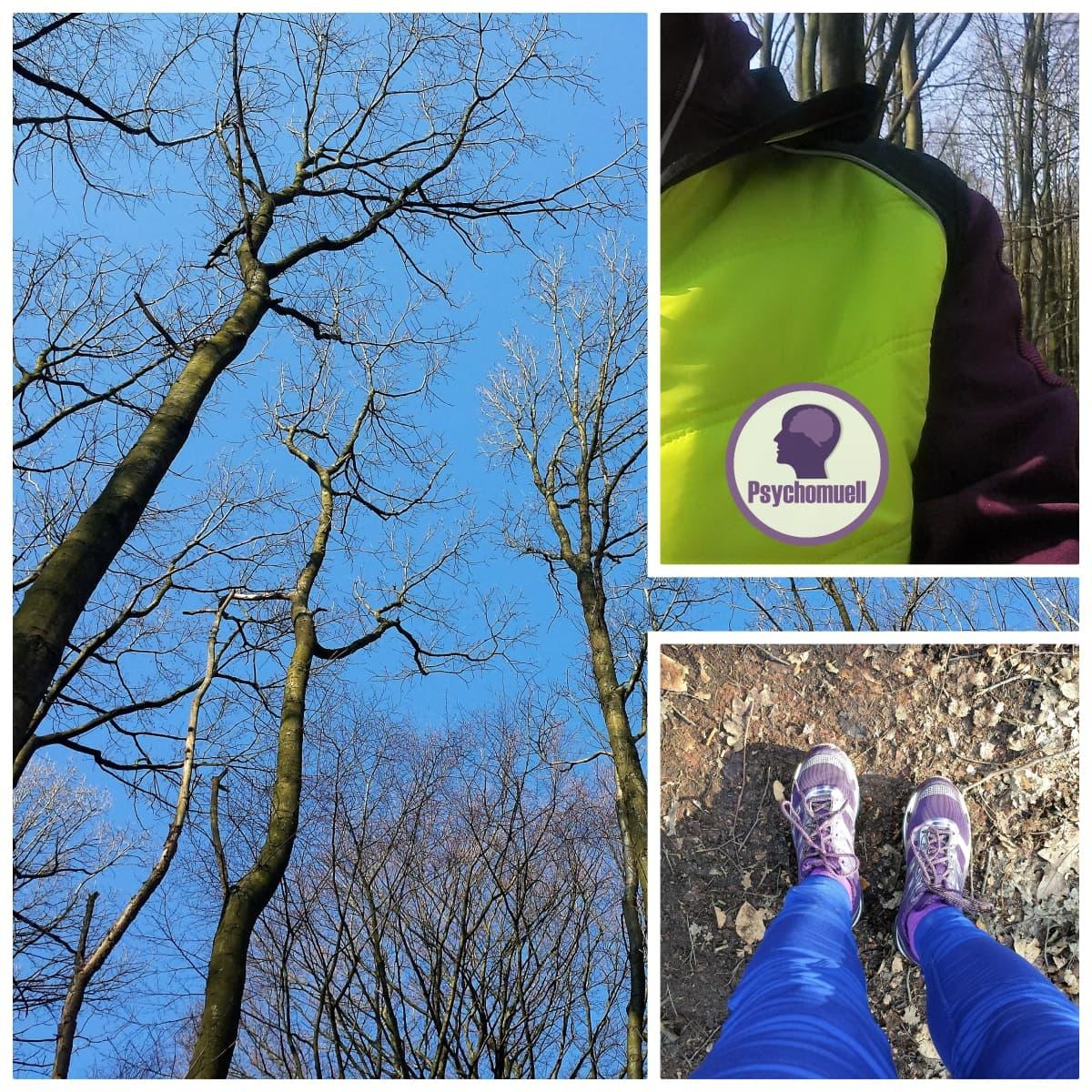 Erster Lauf im Frühjahr bei Sonnenschein
